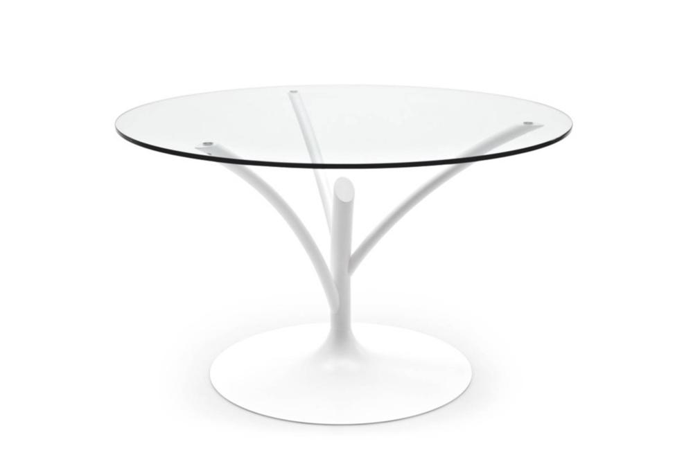 Acacia White Clear Acacia Dining Table Acacia, Dining Table, Calligaris,  Round, Glass